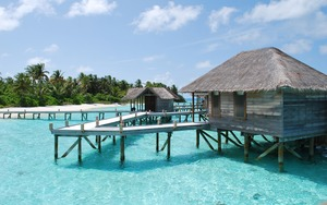 Medium_maldive